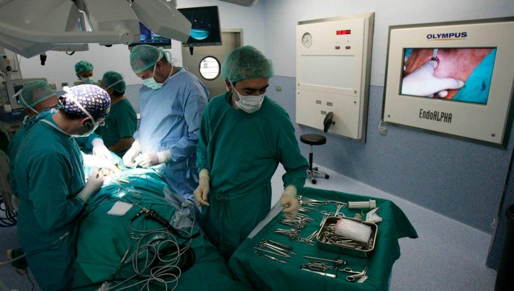 Nuevo récord, 36 trasplantes en un día
