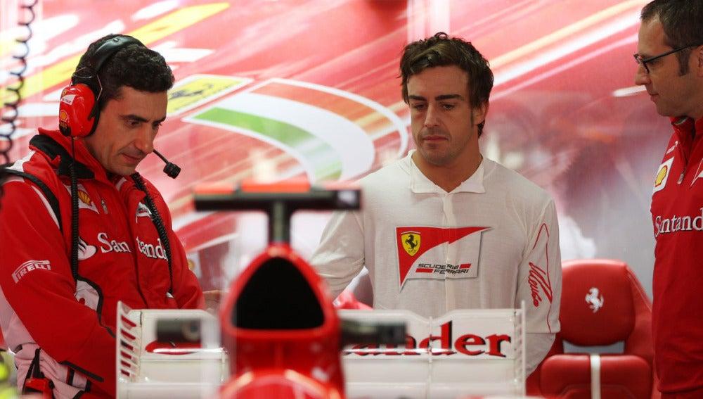 Alonso, junto a Stella y Domenicali