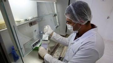 """Florida confirma cuatro nuevos casos de Zika que """"posiblemente"""" contrajeron el virus en el sureste de EEUU"""