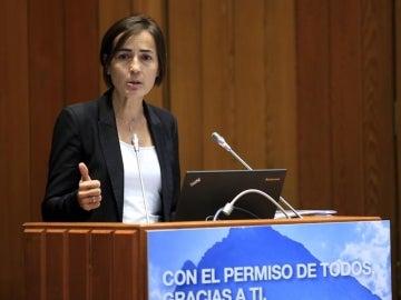 Dimite la directora de la DGT, María Seguí, tras las polémicas que salpican a su marido