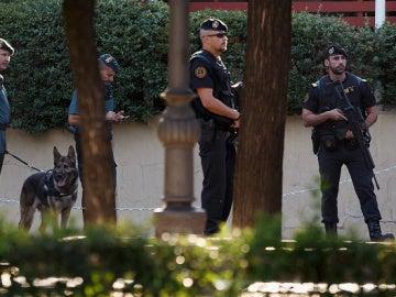 Fuerzas de seguridad españolas