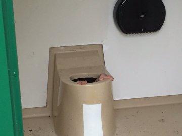 Berntsen intentando salir del inodoro en el que cayó.