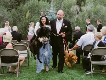 El perro estaba enfermo e iba a ser sacrificado, sin embargo, la pareja le sorprendió con una lección de amor hacia el animal