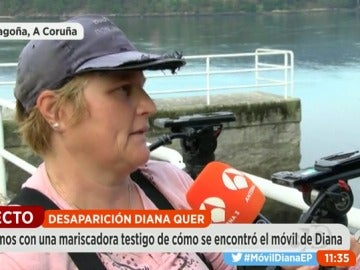 """""""El móvil de Diana Quer tenía muchos golpes, como si alguien lo hubiera querido romper antes de tirarlo al agua"""""""