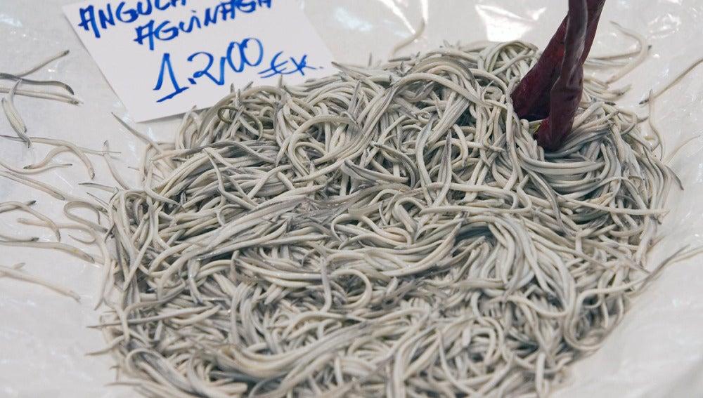 Angulas en una pescadería