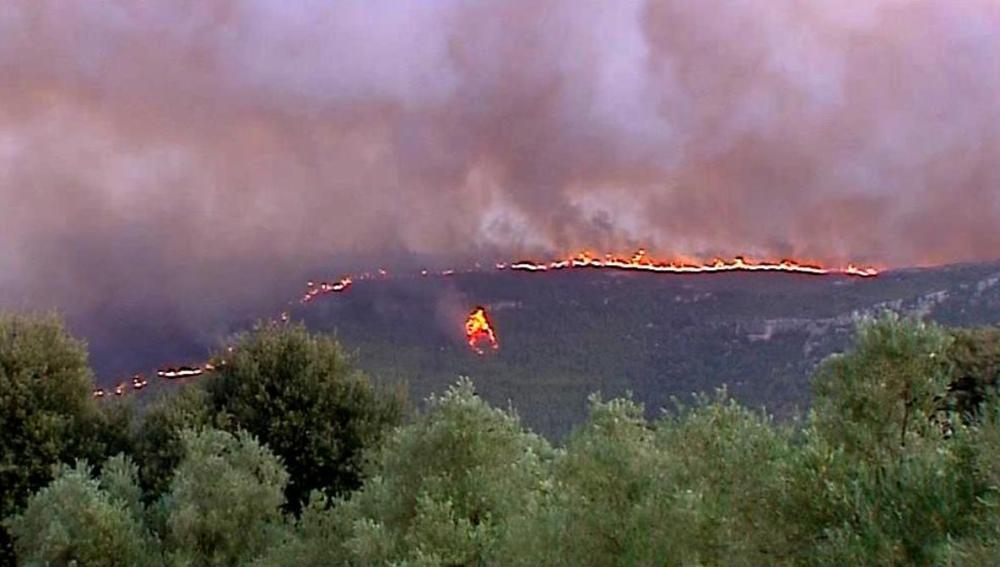 Más de 4.000 hectáreas calcinadas en el incendio en Valencia