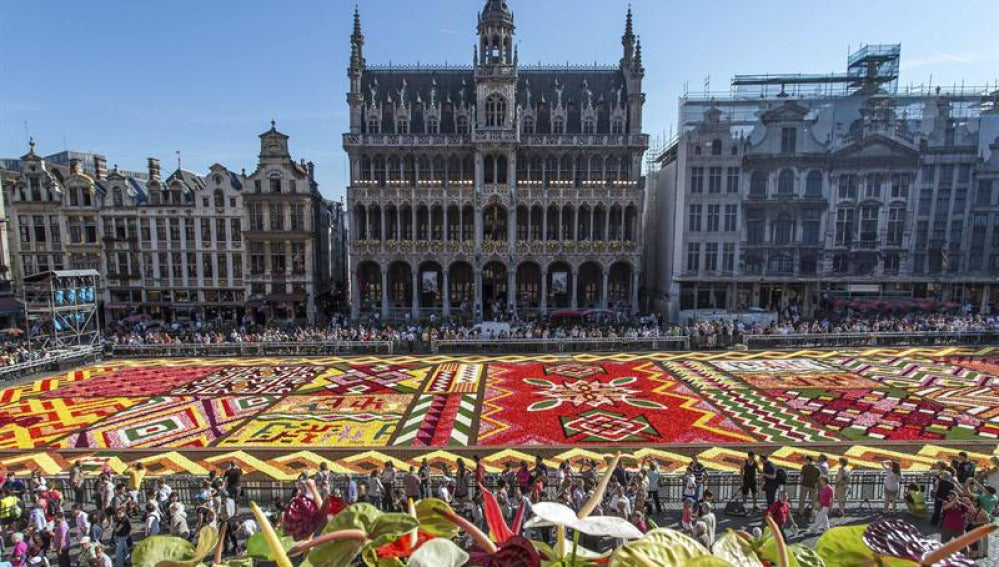 Alfombra de flores en Bruselas
