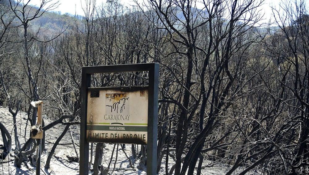Incendio en La Gomera