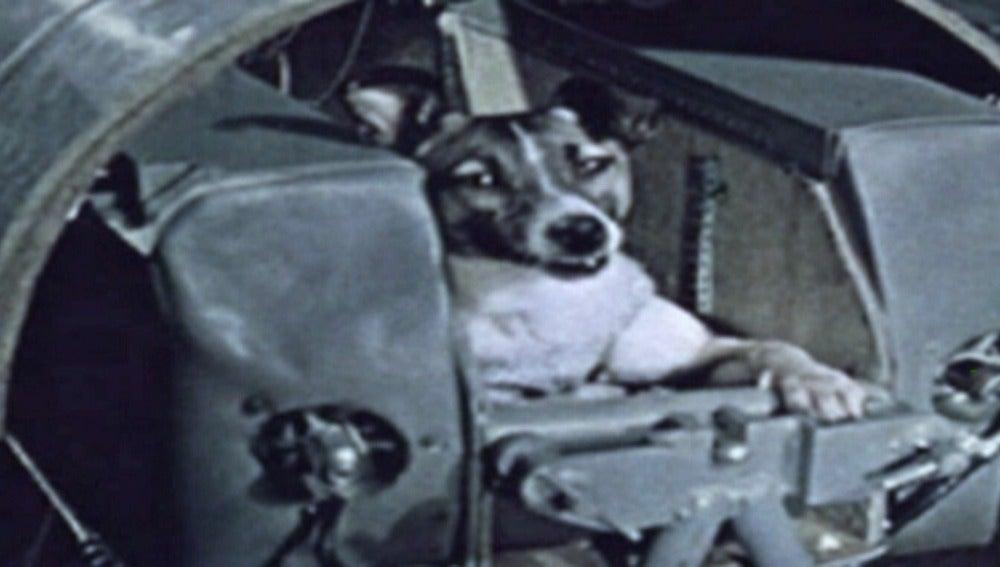 La perra Laika