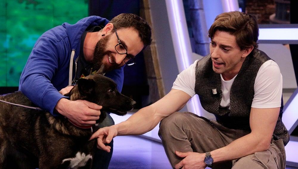 Adrián Lastra con la perrita Amel en 'El Hormiguero 3.0'