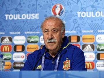 Vicente del Bosque no seguirá en la Selección y Caparrós podría coger su puesto