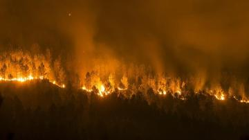 Vista del incendio forestal declarado en la localidad orensana de Entrimo
