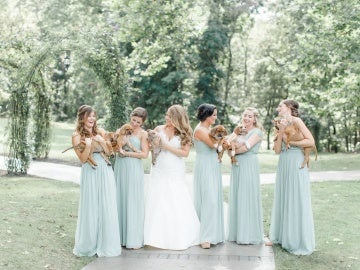 La novia y las 'damas de honor' con los cachorros