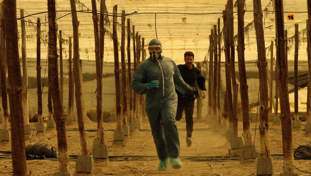 Héctor protagonizará una intensa persecución en los invernaderos para detener al asesino del martillo