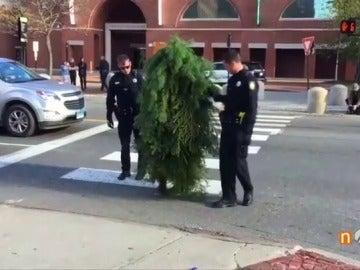 Detenido un hombre disfrazado de árbol por bloquear la calle y poner en peligro a los conductores