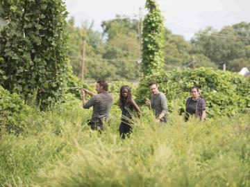 Nuevas imágenes de 'The Walking Dead'