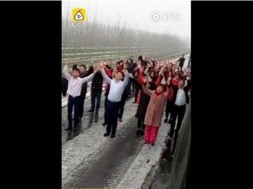 Hacen un baile en el arcén de la autopista