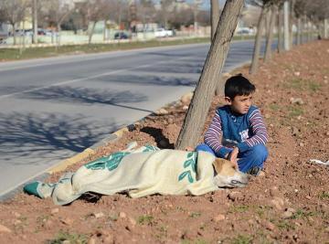 Hüseyin, el refugiado sirio que socorrió a un perro atropellado