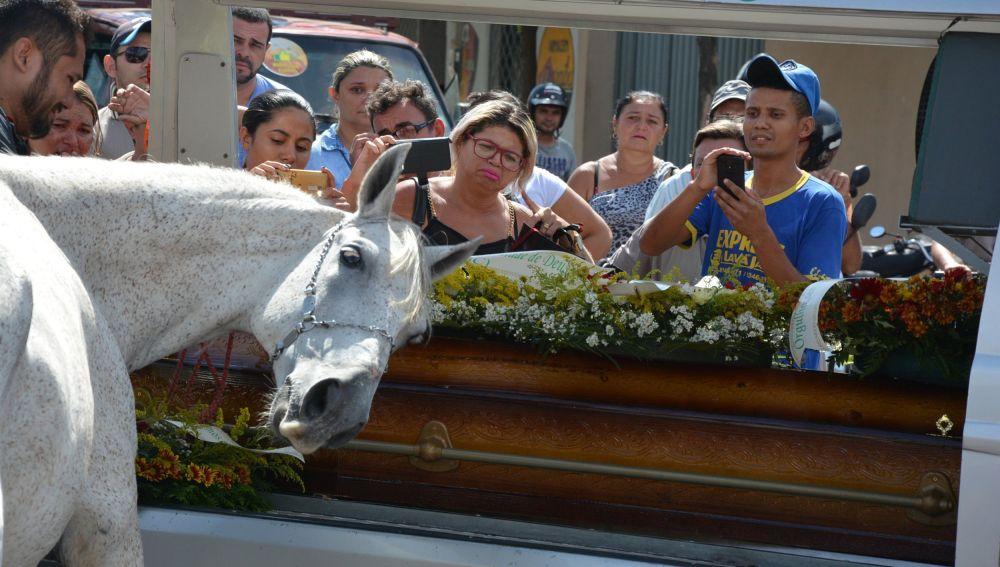 VIDEO: Caballo llora desconsolado en funeral de su dueño