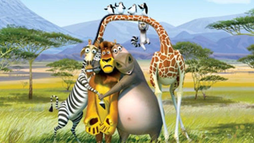 Los animales de Madagascar 2