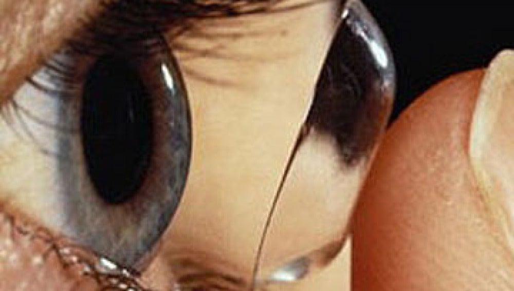 Los niños también pueden llevar lentillas
