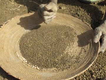 Crisis alimentaria en Chad