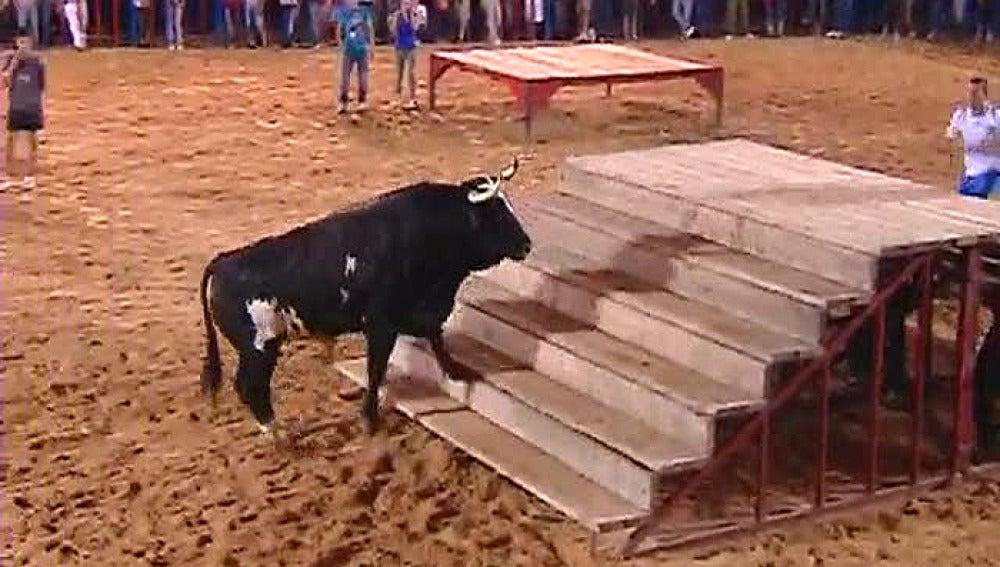 Ratón, un toro muy cotizado