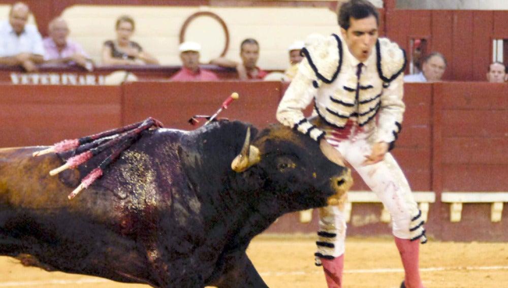 El torero mexicano Arturo Macías se encuentra grave tras su cogida en Cádiz