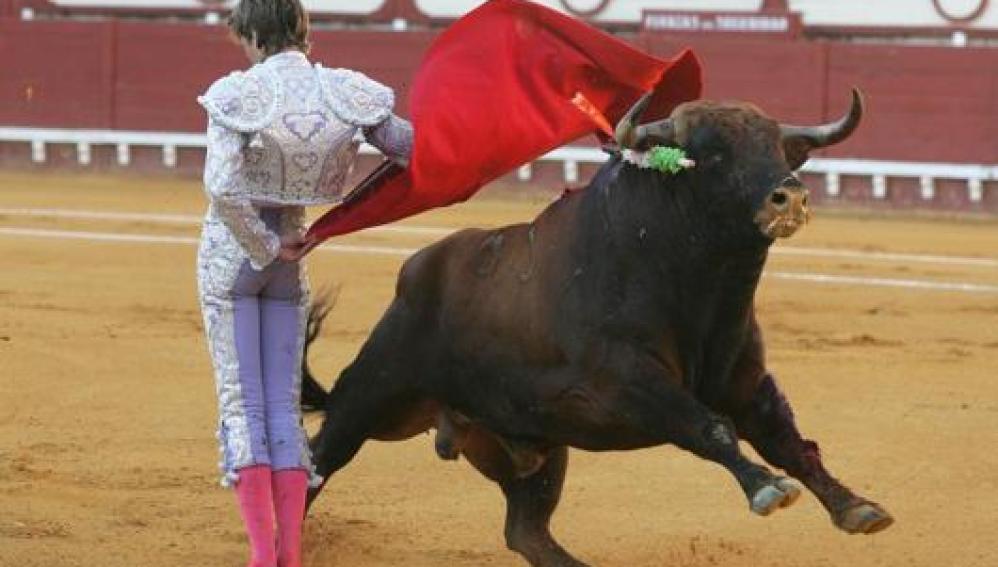 Un torero en una plaza de toros