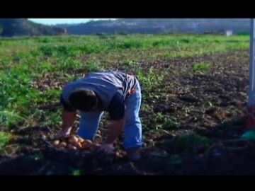 A FONDO LP (AGRICULTURA)