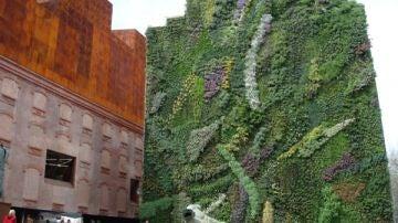 La solución de los jardines verticales