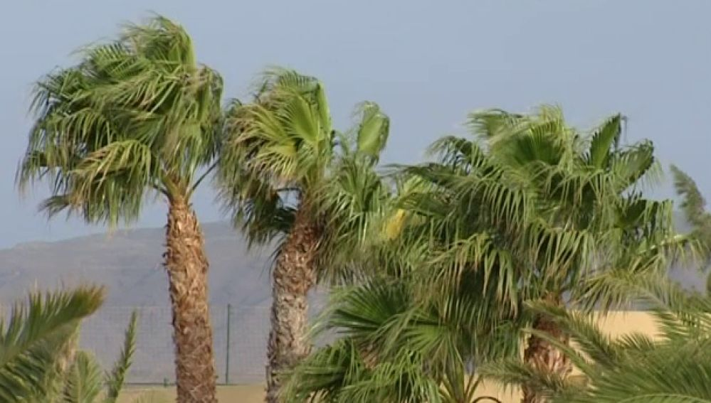 El viento sorprendió ayer a las islas