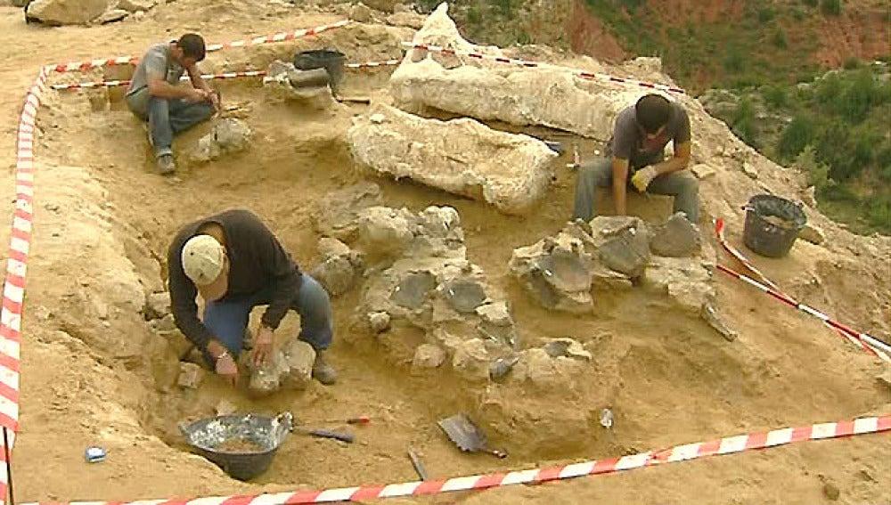 Trabajo de los arqueólogos