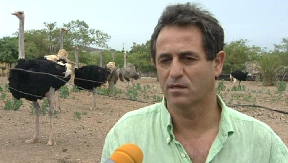 Les contamos ahora un problema entre avestruces y perros