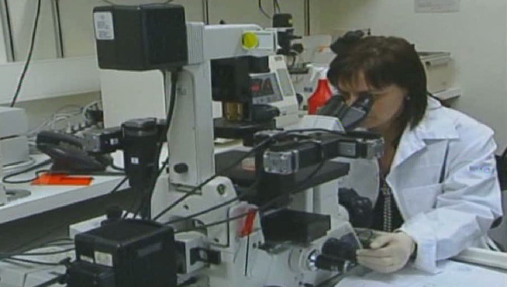 Investigación con células dentales