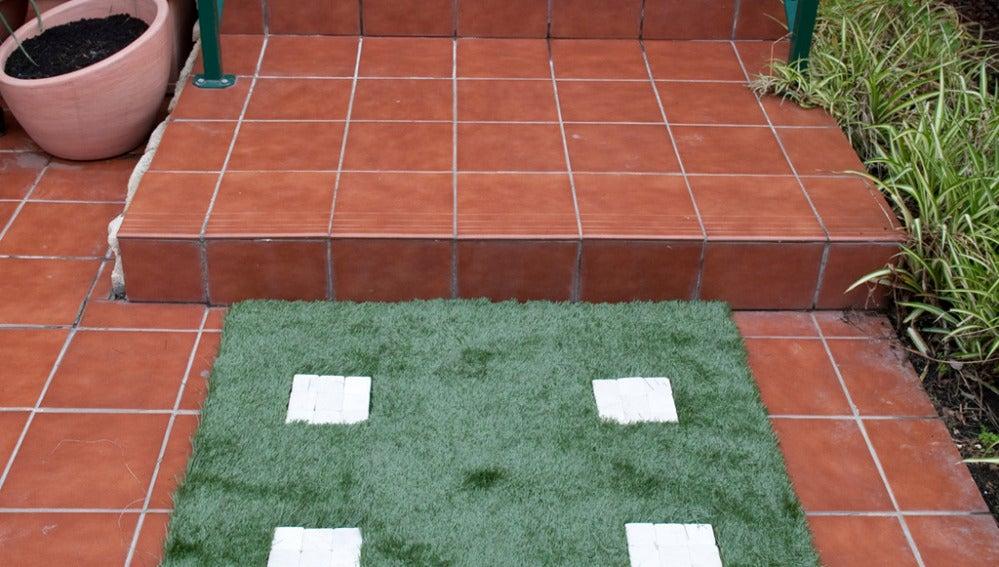 Paso original para terraza