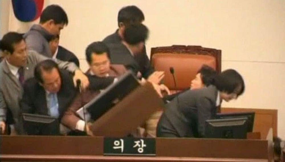 Pelea en el Ayuntamiento de Corea