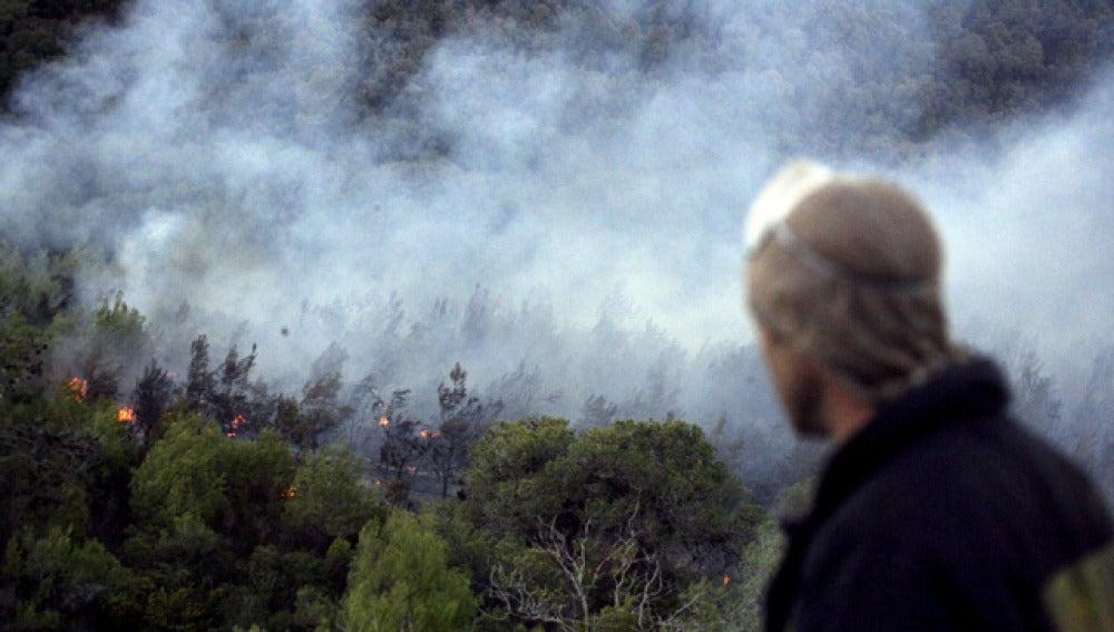 Incendio a las afueras de Haifa