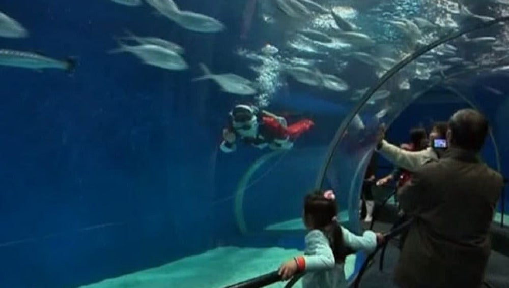 Papá Noel bajo el agua