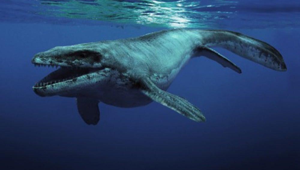 'Sea Rex', cuando los dinosaurios eran anfibios