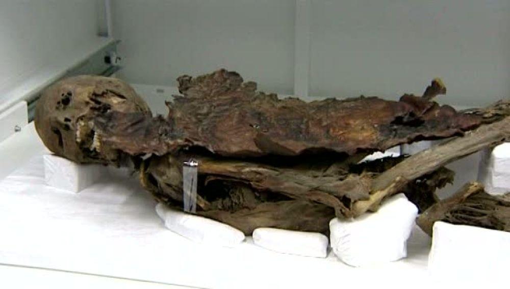 Las momias guanches regresan a Canarias