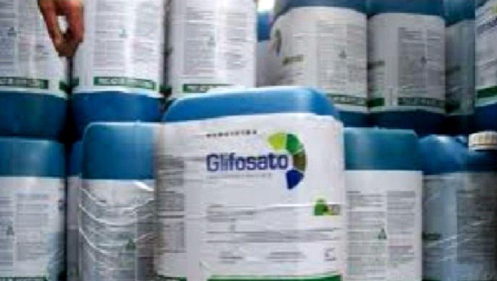 Denuncian el uso de un pesticida muy peligroso para la salud