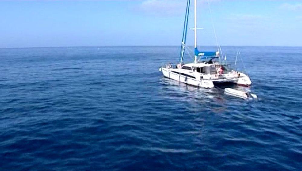 De expedición científica  para proteger los cetáceos