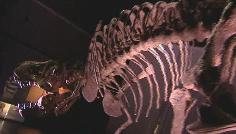 Museo de dinosaurios en Teruel