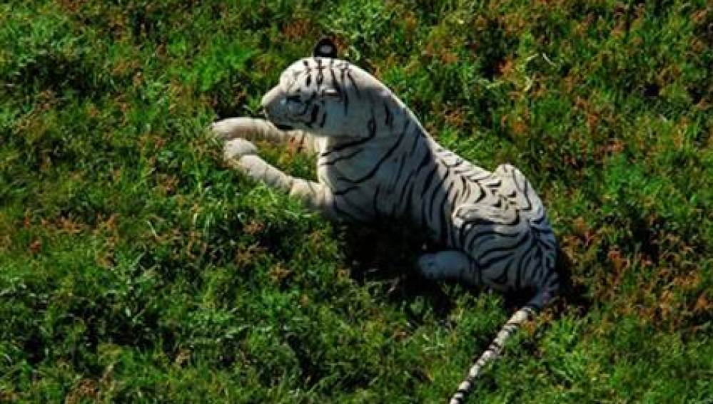 Tigre de peluche