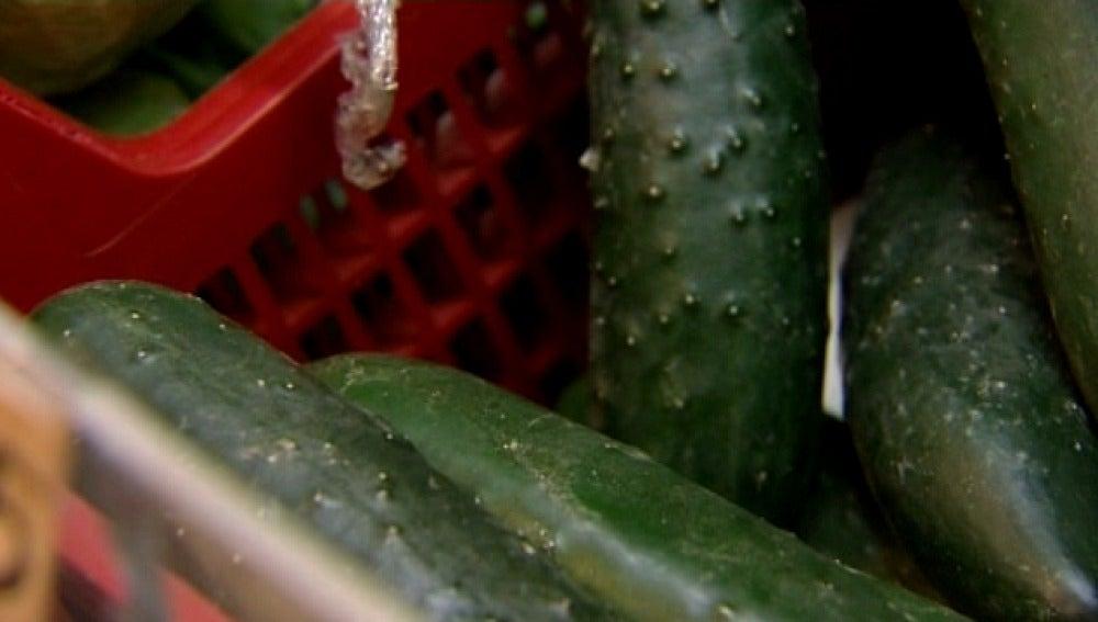 """Canarias vigila la importación de """"pepinos bacterianos"""""""