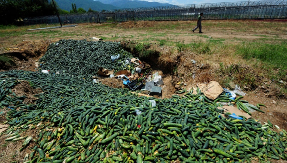 Pepinos que tuvieron que ser tirados en Macedonia