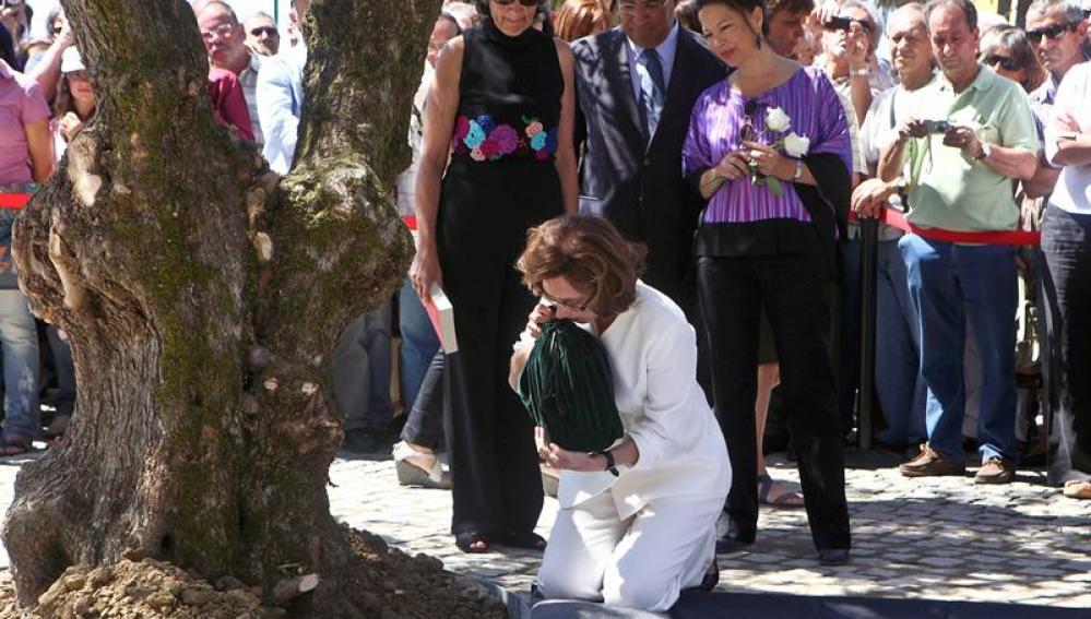 Las cenizas de Saramago reposan bajo la sombra de un olivo