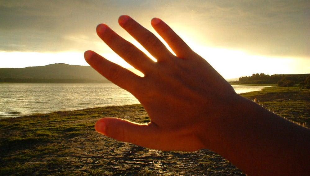 Los dedos dan pistas sobre el tamaño de los genitales