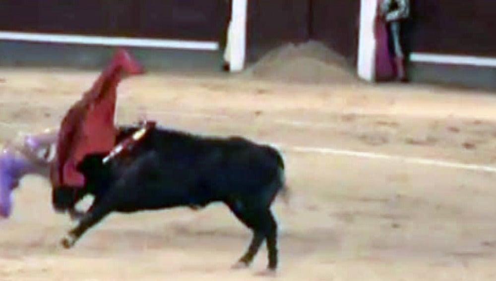 Sergio Flores sufre cinco cornadas en Las Ventas